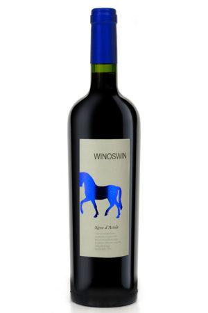 WinoSwin