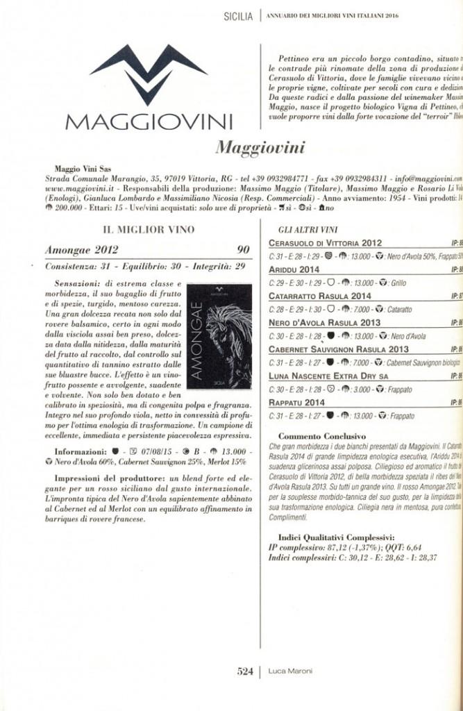 Descrizione-MV---Luca-Maroni