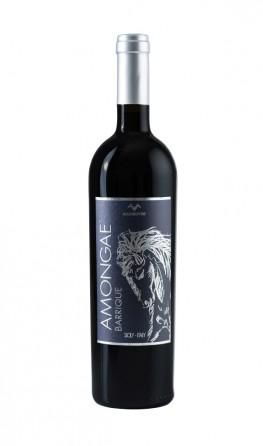 amongae-maggiovini-riserva